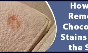 Remove Chocolate Stains from the Sofa